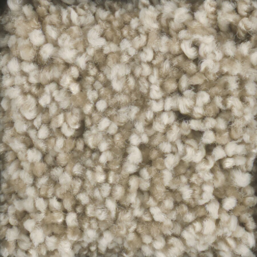 STAINMASTER Dynamic Beauty 1 TruSoft Tee Pee Plus Carpet Sample