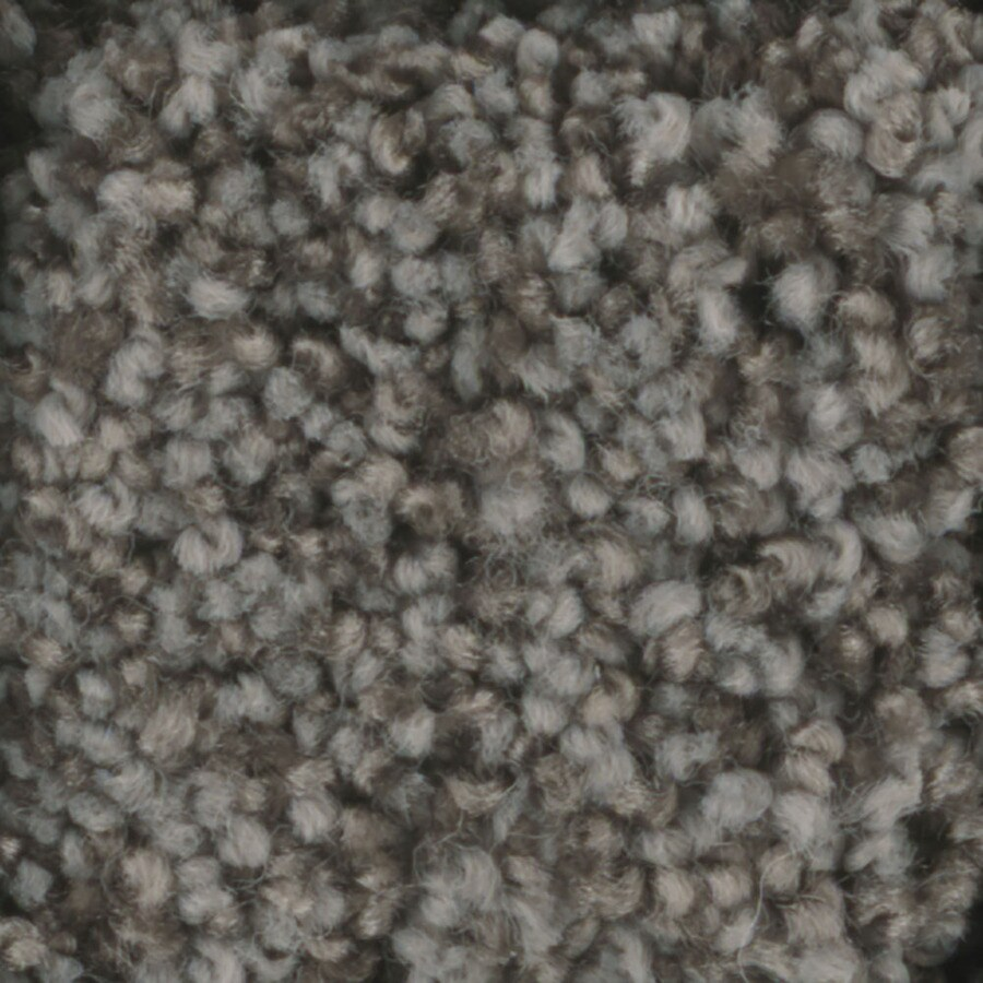 STAINMASTER Dynamic Beauty 2 TruSoft Hot Ashes Plush Carpet Sample