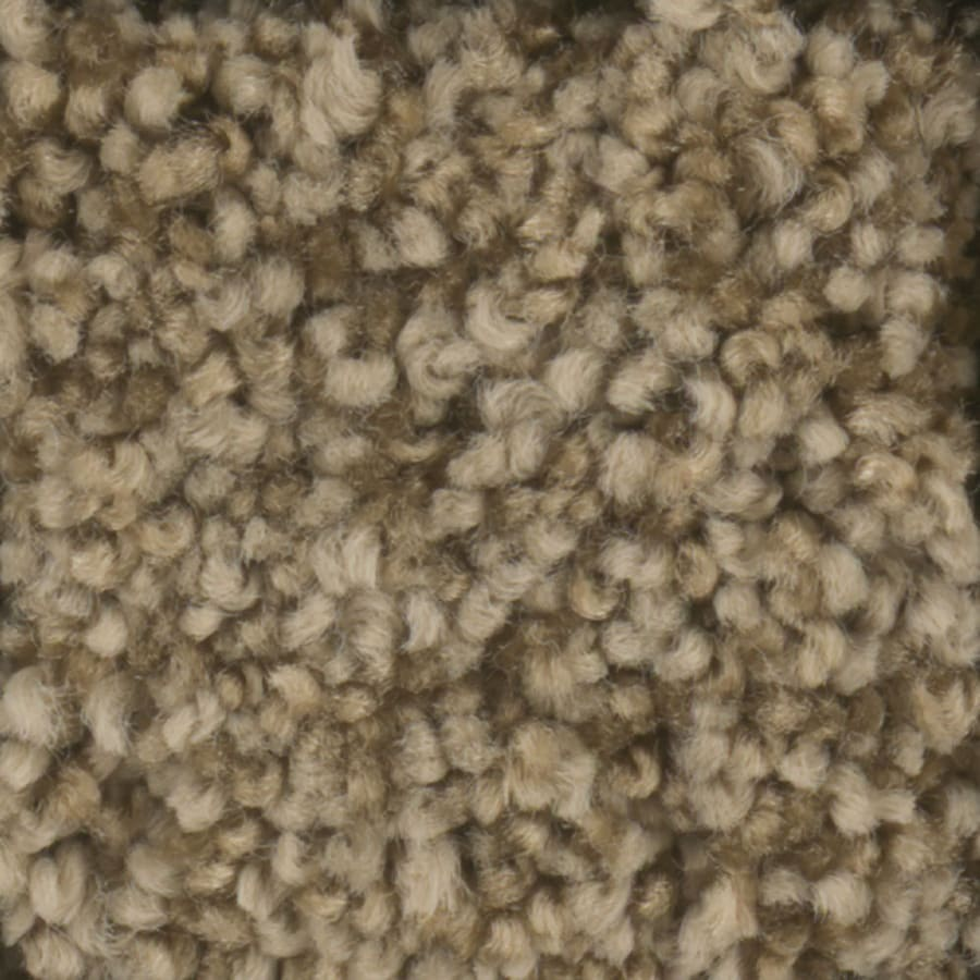 STAINMASTER TruSoft Dynamic Beauty 2 Barn Wood Plush Carpet Sample