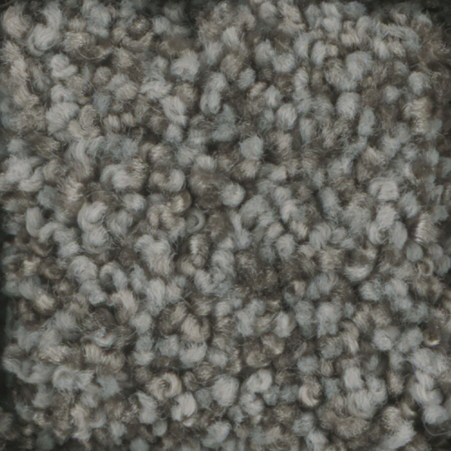 STAINMASTER TruSoft Dynamic Beauty 3 Gun Metal Plush Carpet Sample