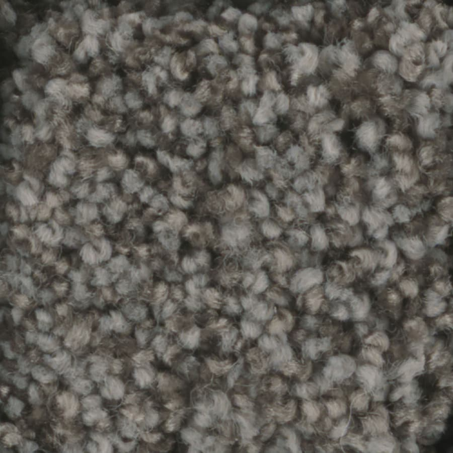 STAINMASTER Dynamic Beauty 3 Trusoft Hot Ashes Plush Carpet Sample