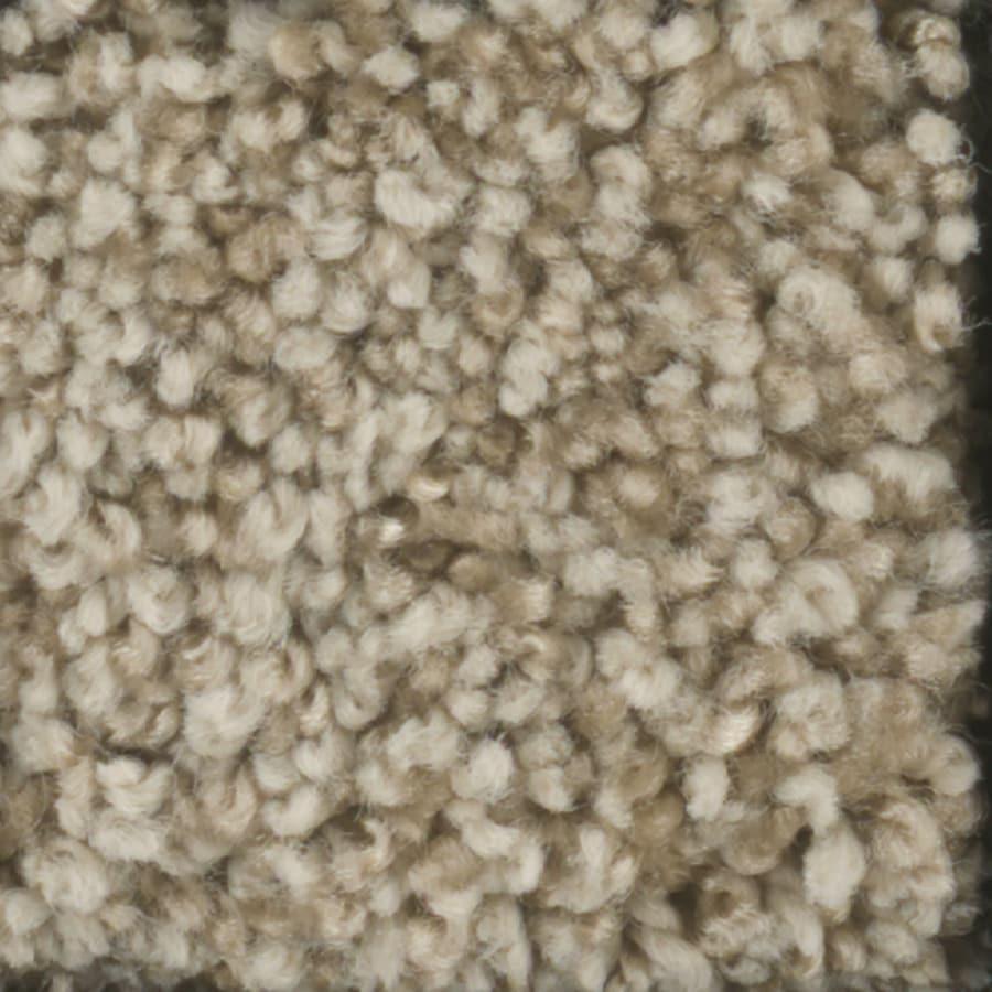 STAINMASTER Dynamic Beauty 3 TruSoft Sombrero Plus Carpet Sample