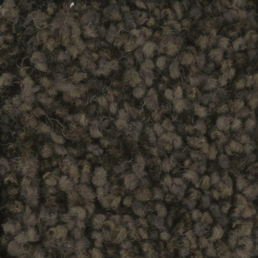 STAINMASTER Dynamic Beauty 3 TruSoft Tuxedo Plus Carpet Sample