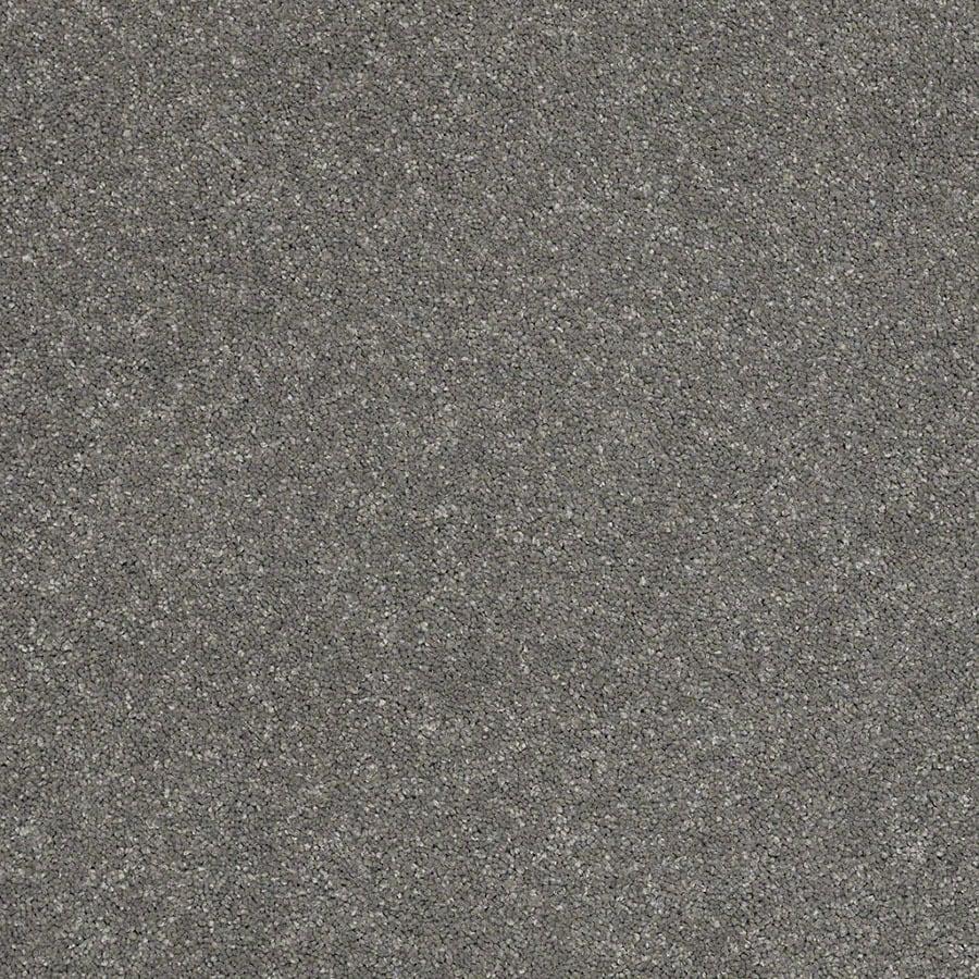 STAINMASTER TruSoft Classic I (S) Slate Plush Carpet Sample