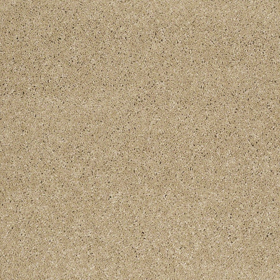 STAINMASTER TruSoft Classic I (S) Canyon Road Plush Carpet Sample