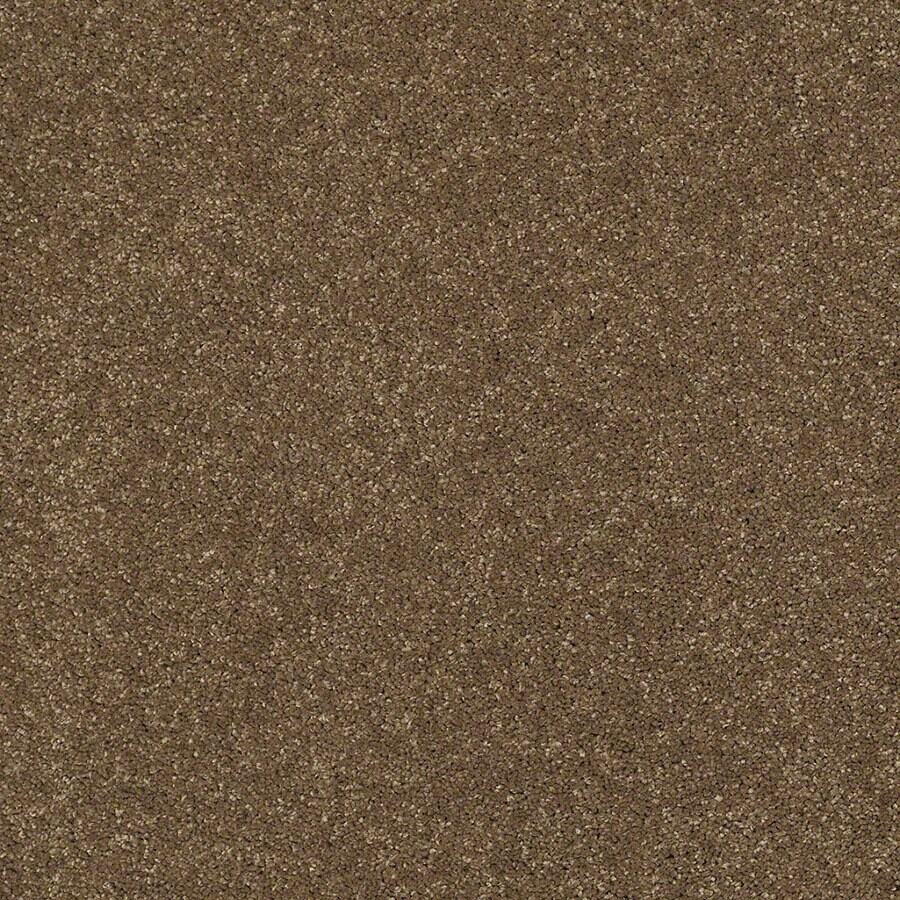 STAINMASTER TruSoft Classic I (S) Tea Wash Plush Carpet Sample