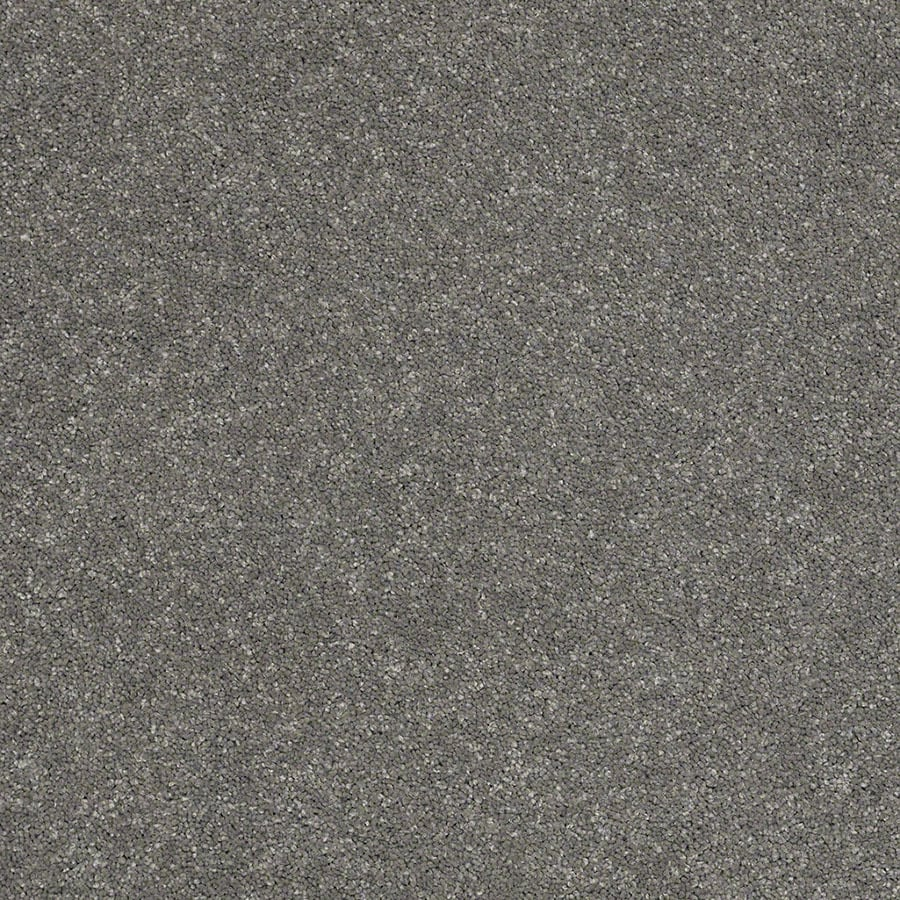 STAINMASTER Classic I (S) TruSoft Slate Plus Carpet Sample