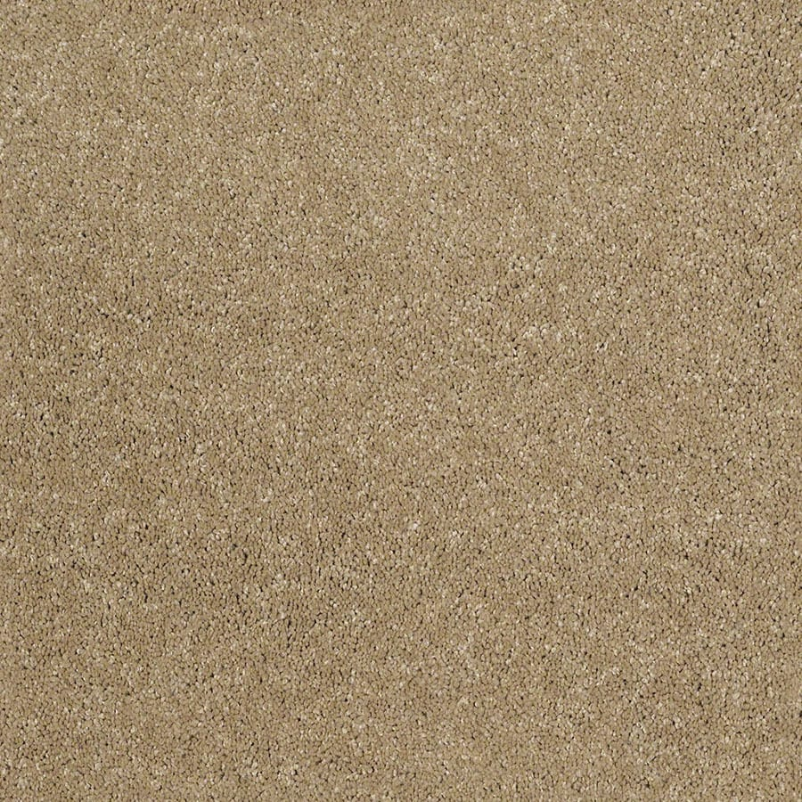STAINMASTER Classic I (S) TruSoft Flax Plus Carpet Sample