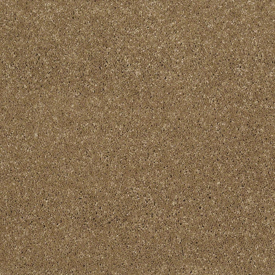 STAINMASTER Classic I (S) TruSoft Wickerwork Plus Carpet Sample