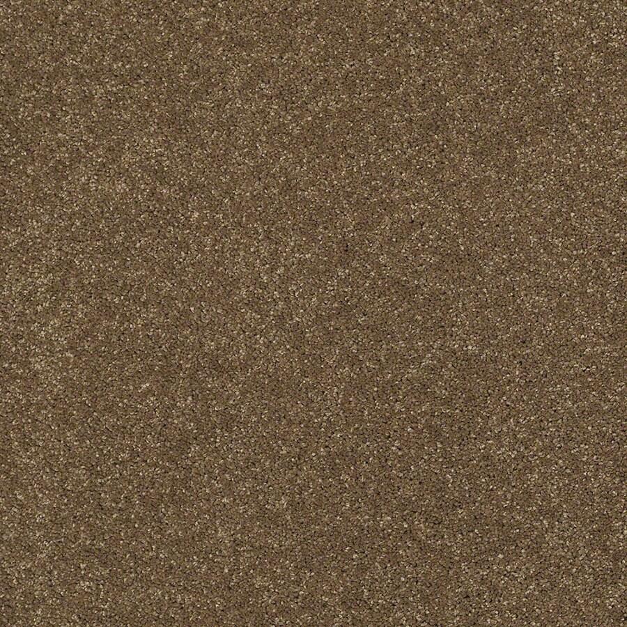 STAINMASTER Classic I (S) TruSoft Tea Wash Plus Carpet Sample