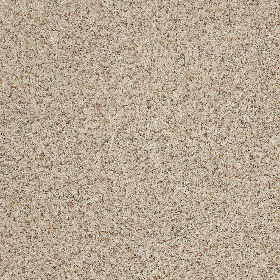 STAINMASTER Classic I (T) TruSoft Cityscape Plus Carpet Sample