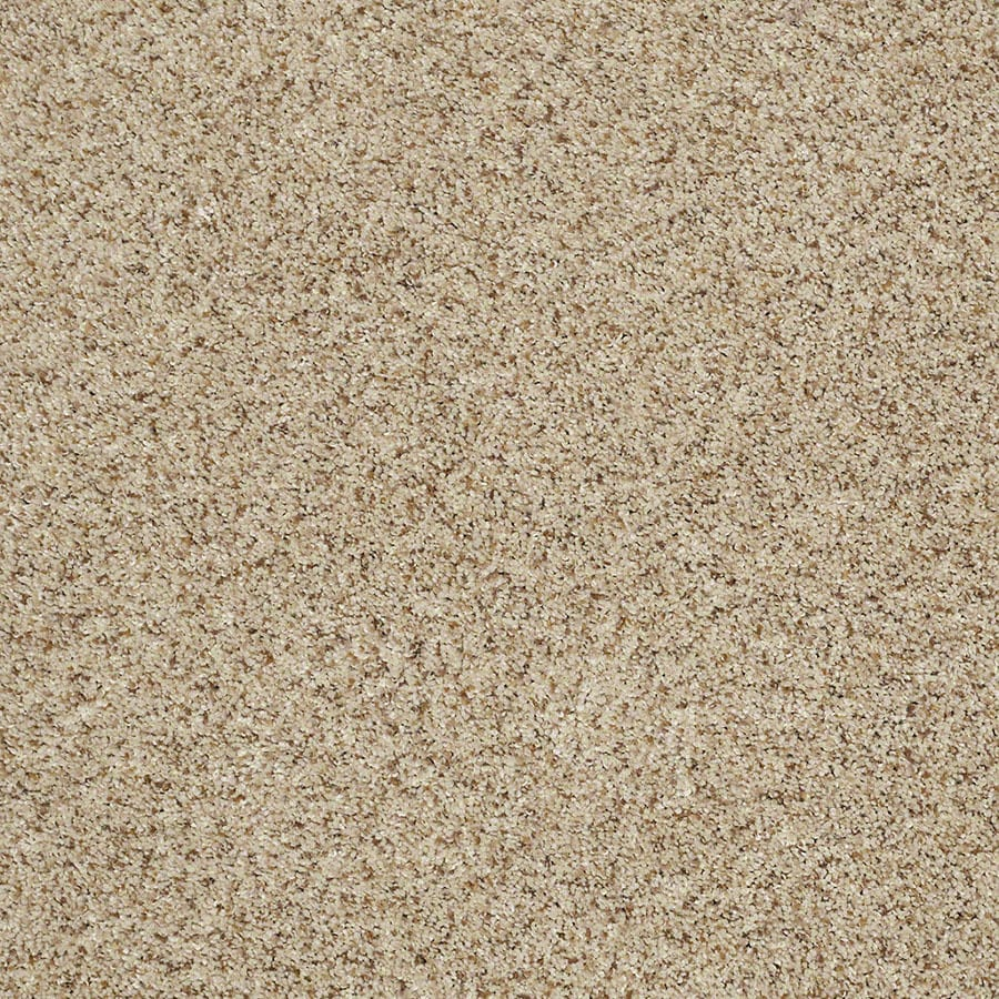 STAINMASTER Classic I (T) TruSoft Downtown Plus Carpet Sample