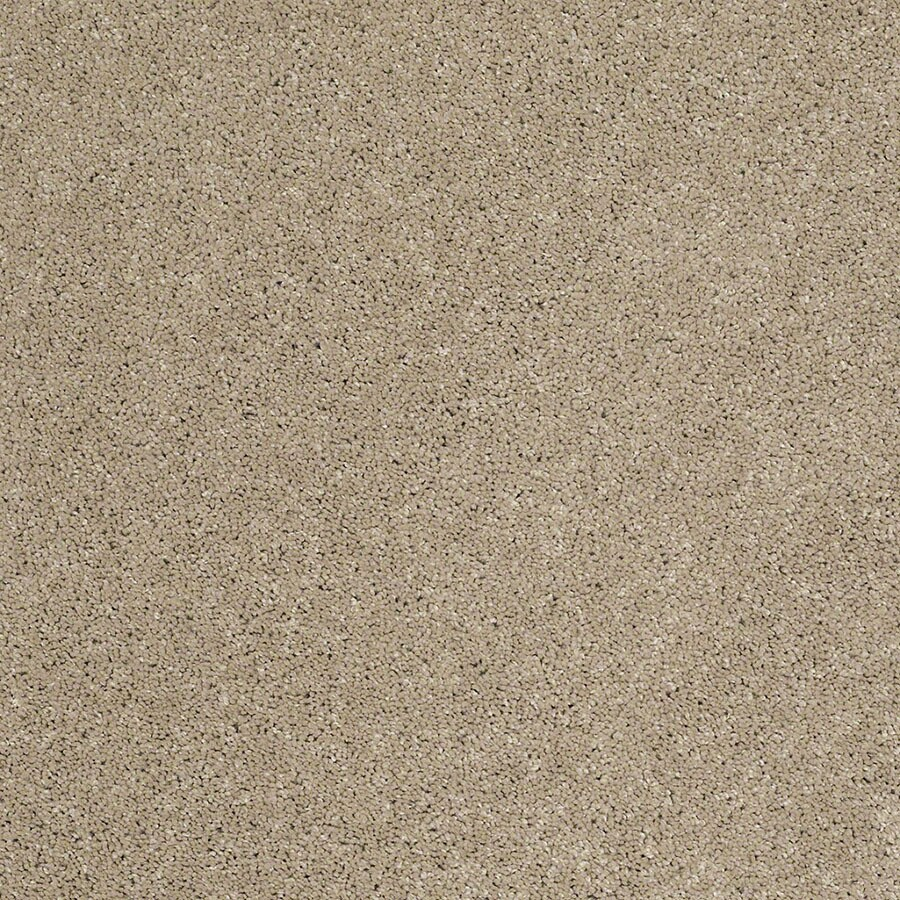 STAINMASTER TruSoft Classic II (S) Driftwood Plush Carpet Sample