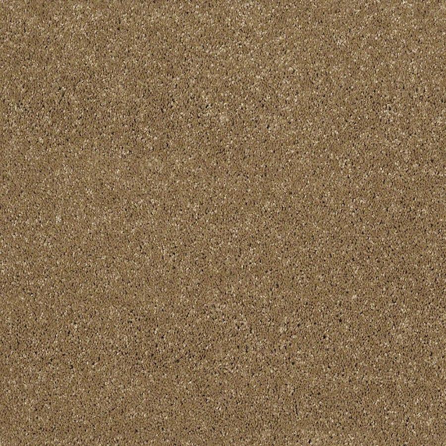 STAINMASTER Classic II (S) TruSoft Wickerwork Plus Carpet Sample