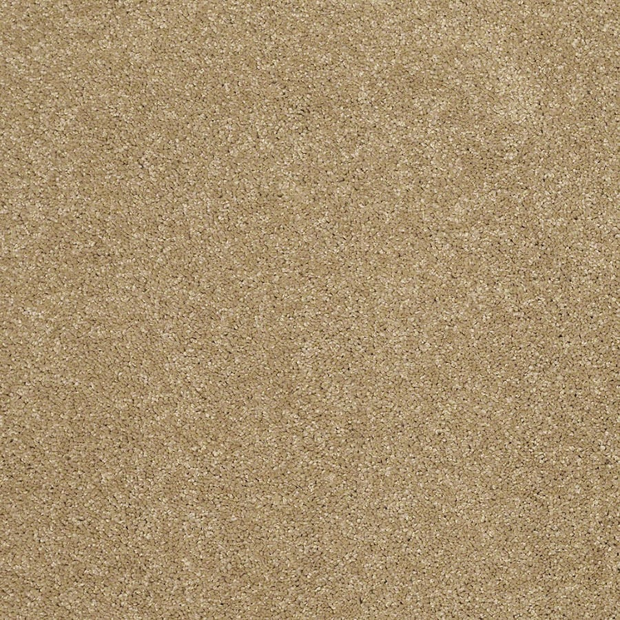 STAINMASTER TruSoft Classic II (S) Cappuccino Plush Carpet Sample
