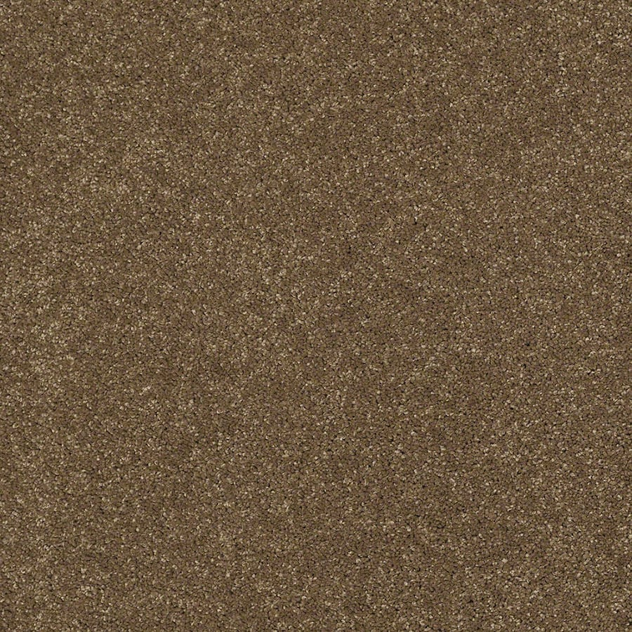 STAINMASTER TruSoft Classic II (S) Tea Wash Plush Carpet Sample