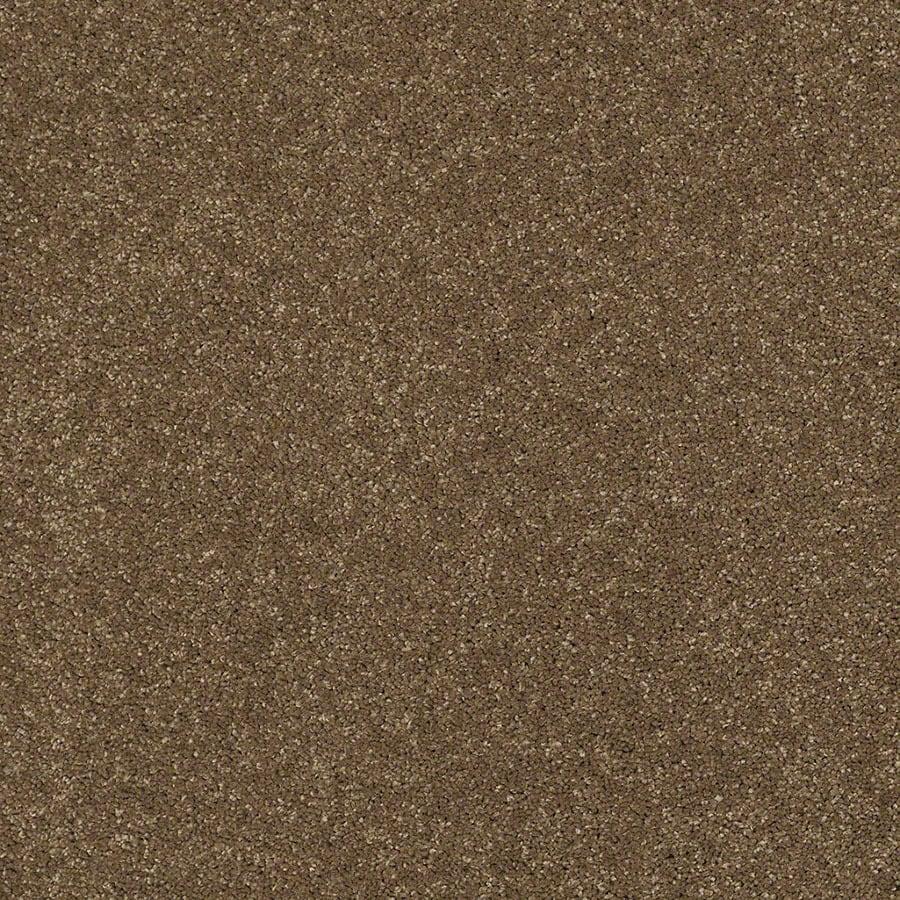 STAINMASTER Classic II (S) TruSoft Tea Wash Plush Carpet Sample