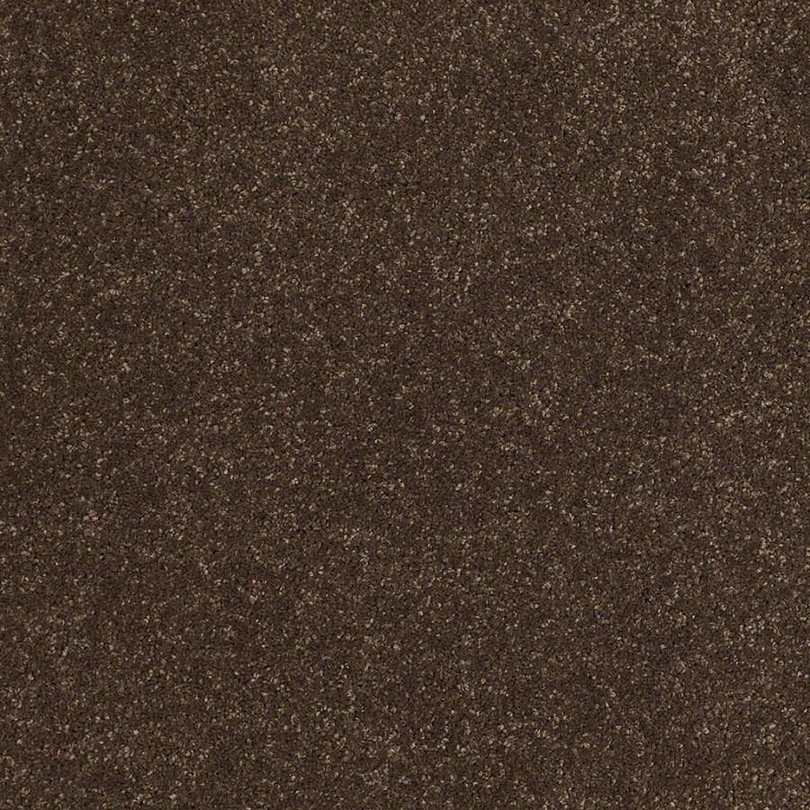 STAINMASTER TruSoft Classic II (S) Dark Chocolate Plush Carpet Sample
