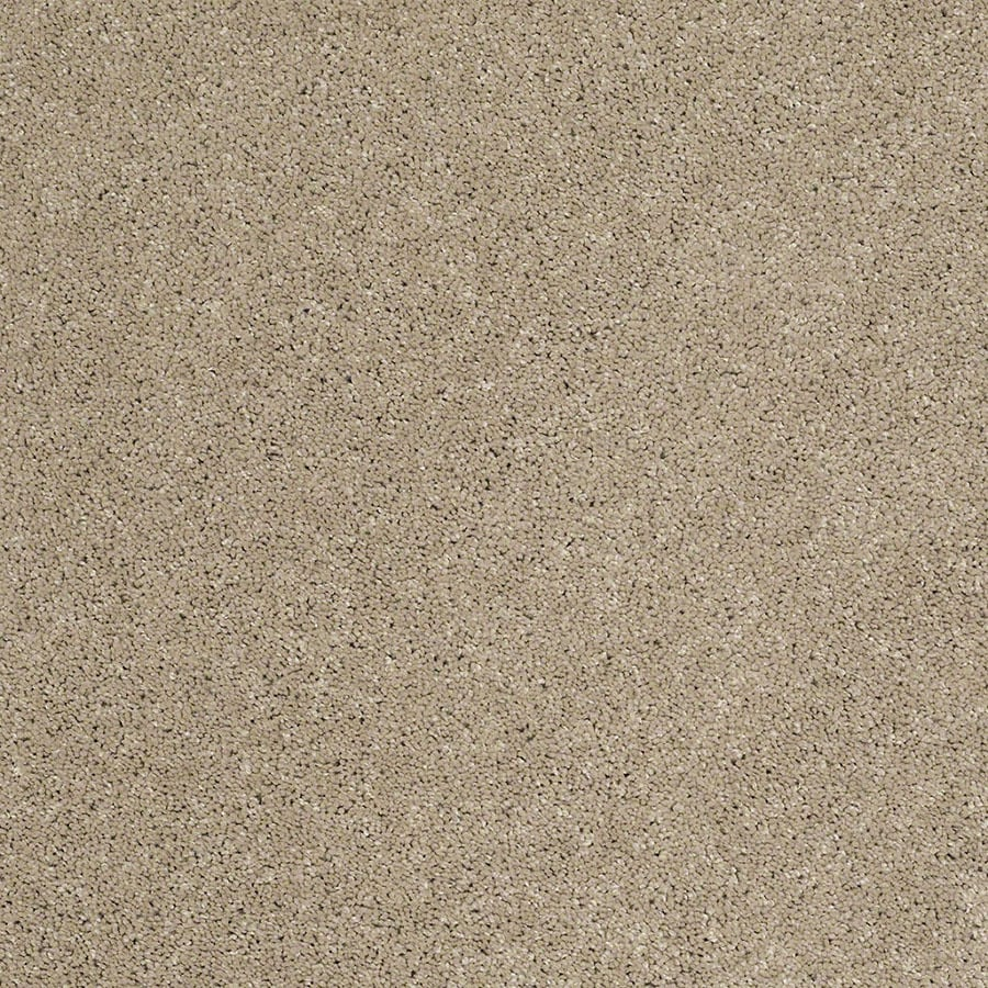 STAINMASTER Classic II (S) TruSoft Driftwood Plus Carpet Sample