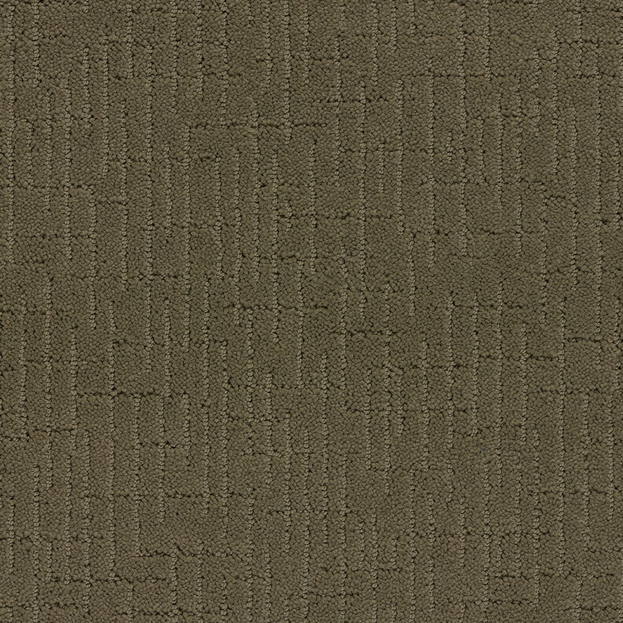 STAINMASTER TruSoft Gates Mills Dry Creek Carpet Sample