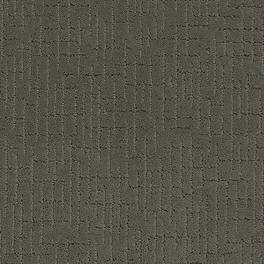 STAINMASTER TruSoft Gates Mills Briar Patch Berber/Loop Carpet Sample