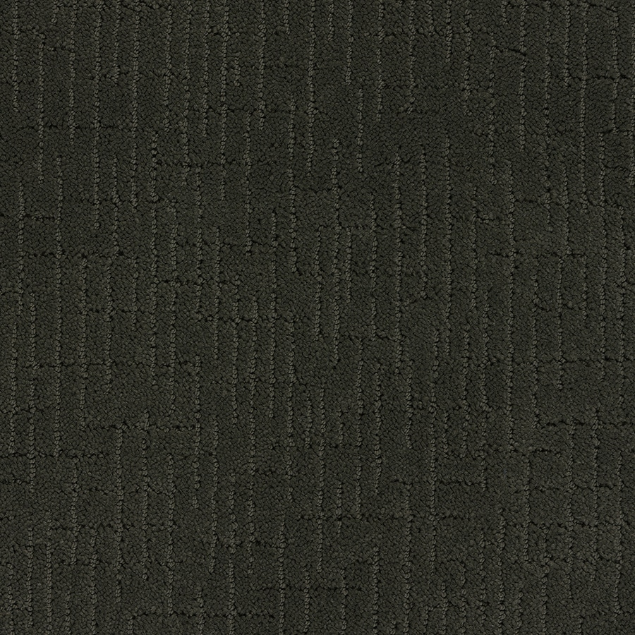 STAINMASTER Gates Mills TruSoft Tuxedos Cut and Loop Carpet Sample