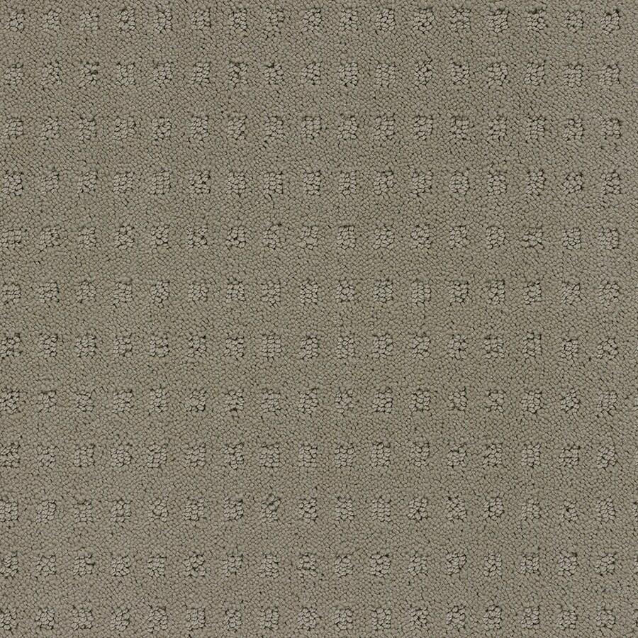 STAINMASTER TruSoft Glen Willow Masonry Carpet Sample