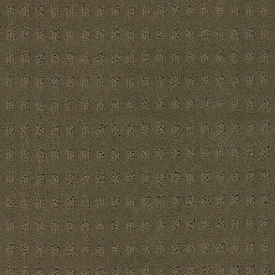 STAINMASTER TruSoft Glen Willow Dry Creek Berber/Loop Carpet Sample