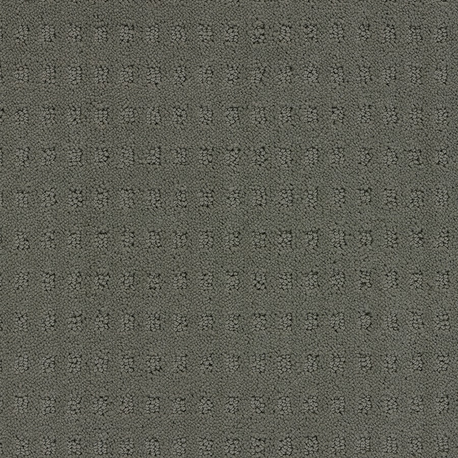 STAINMASTER Glen Willow TruSoft Scarecrow Cut and Loop Carpet Sample