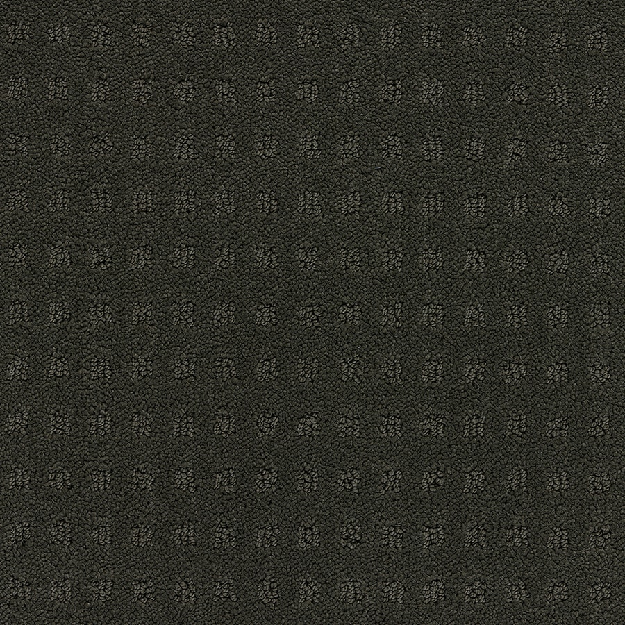 STAINMASTER TruSoft Glen Willow Tuxedos Berber/Loop Carpet Sample