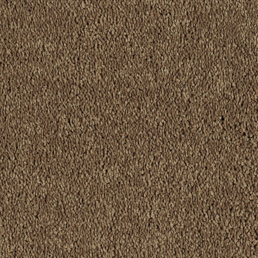 STAINMASTER Essentials Soft and Cozy I- S Baked Pecan Plush Carpet Sample