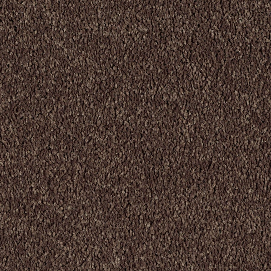 STAINMASTER Soft and Cozy I - S Essentials Patina Plush Carpet Sample