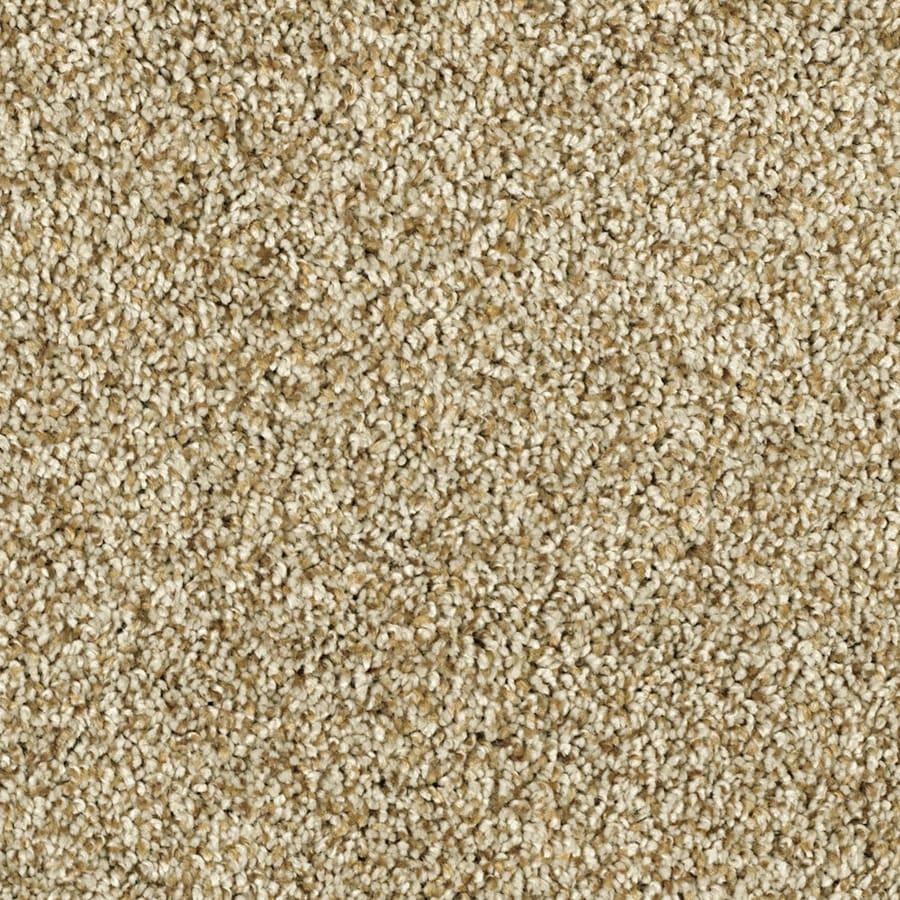 STAINMASTER Soft and Cozy I- T Essentials Dunes Plus Carpet Sample