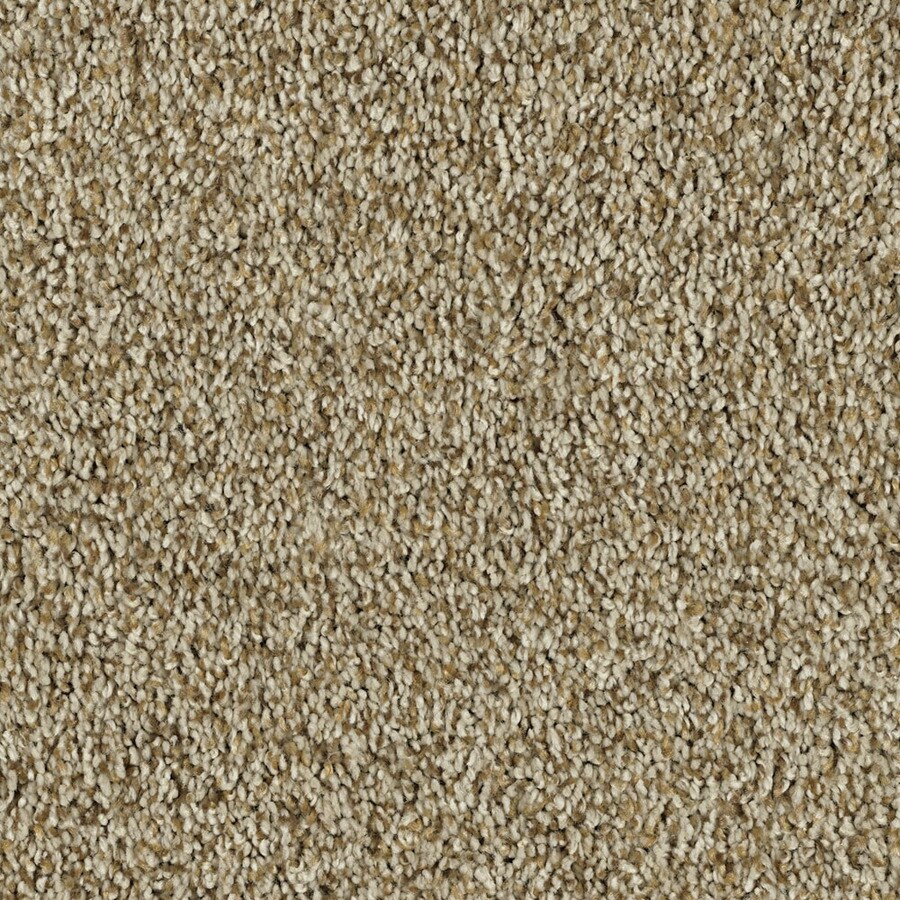 STAINMASTER Soft and Cozy I- T Essentials Golden Oak Plus Carpet Sample