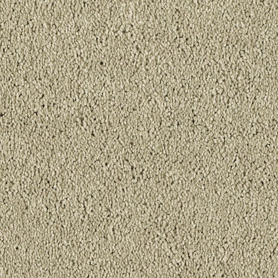 STAINMASTER Essentials Soft and Cozy II- S Sand Swept Plush Carpet Sample