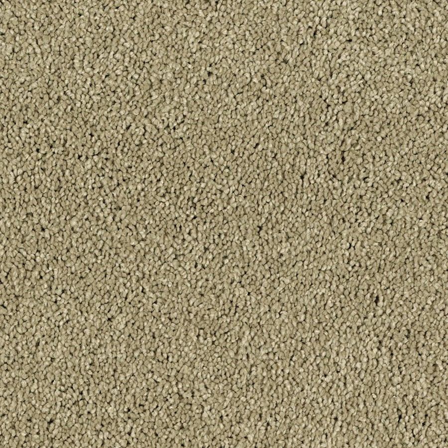 STAINMASTER Essentials Soft and Cozy II- S Deer Field Plush Carpet Sample