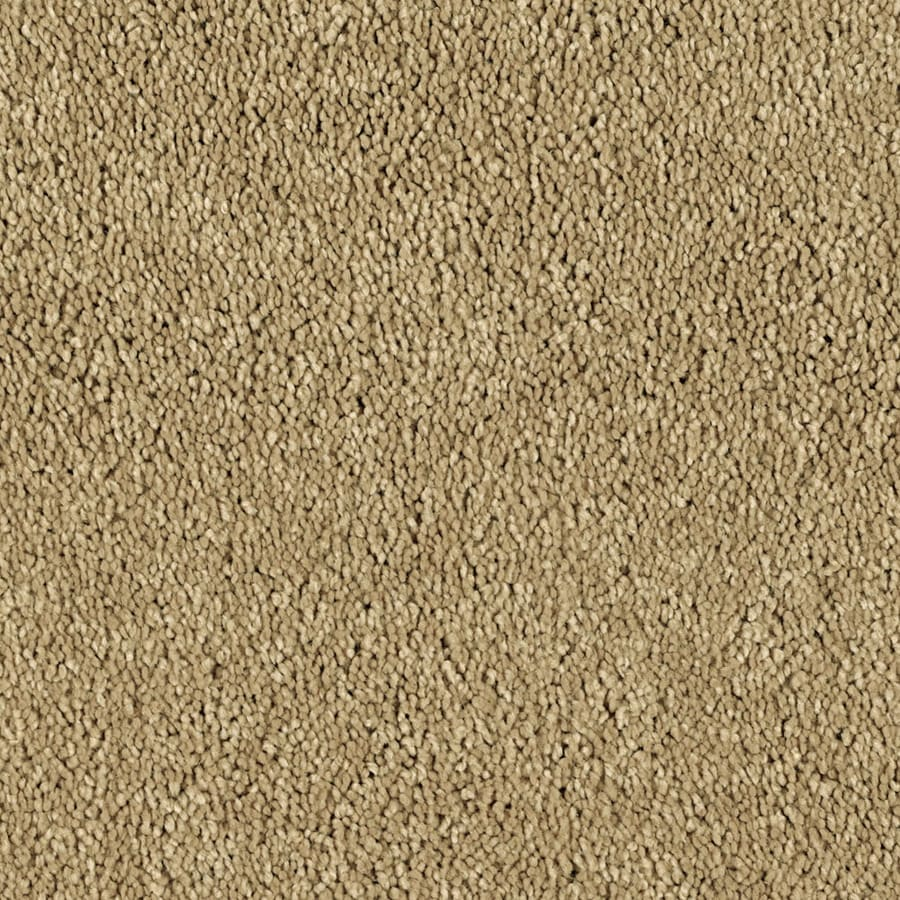 STAINMASTER Essentials Soft and Cozy II (S) Tuscan Sun Plush Carpet Sample