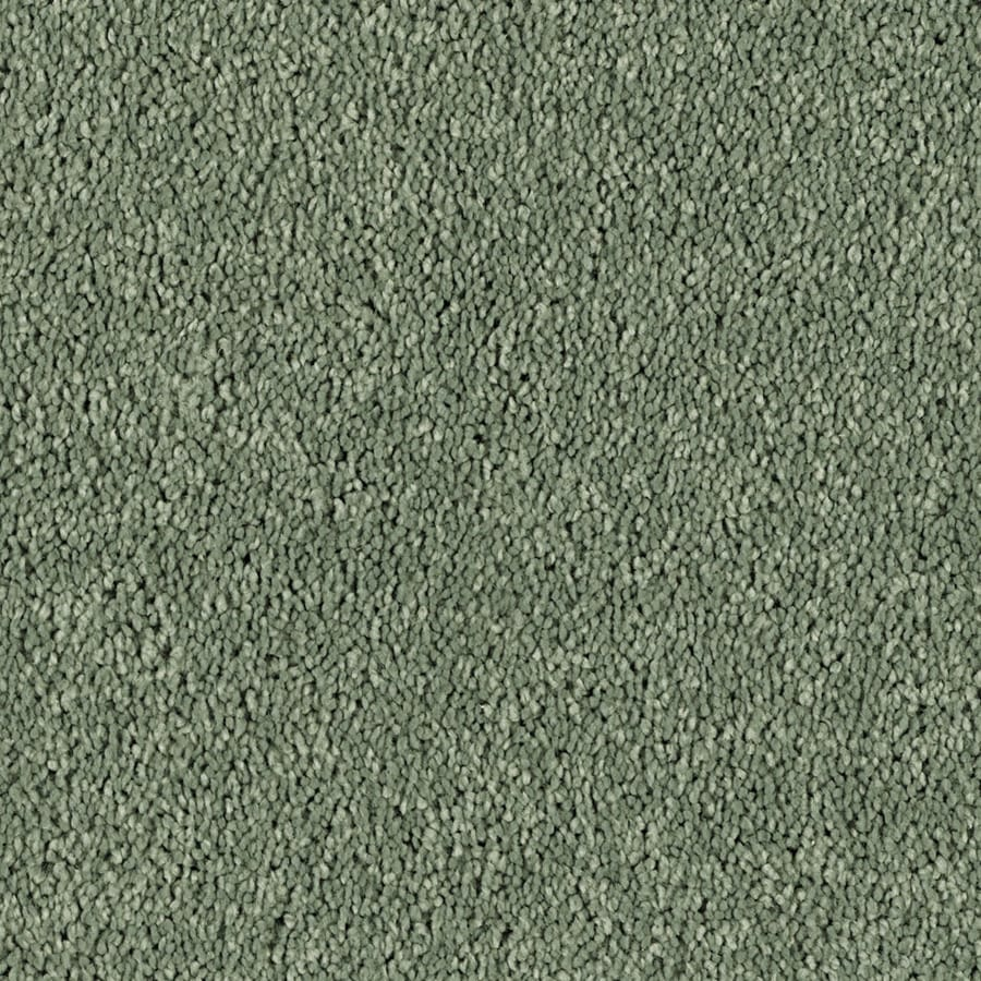 STAINMASTER Essentials Soft and Cozy II- S Blue Grass Carpet Sample