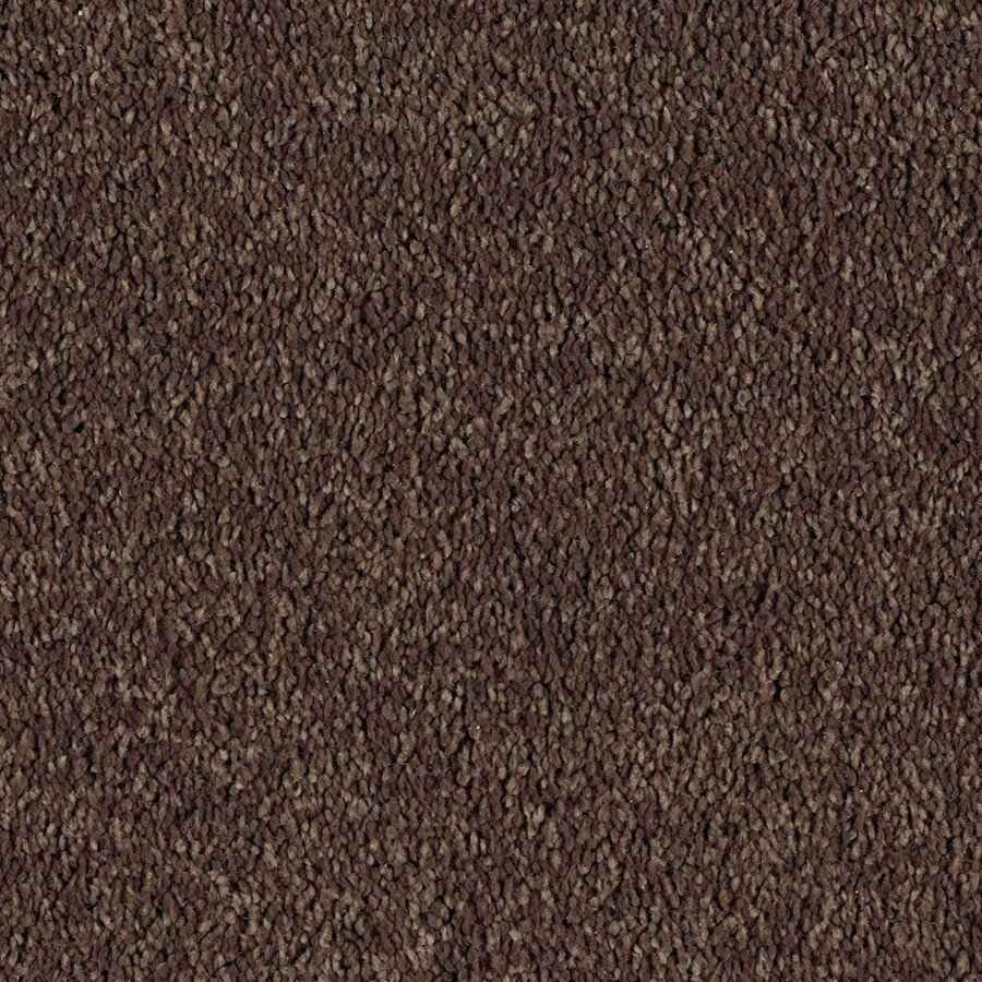 STAINMASTER Essentials Soft and Cozy II (S) Patina Plush Carpet Sample