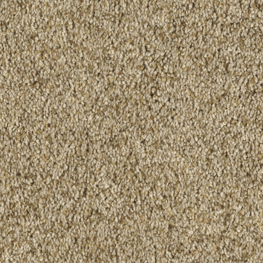 STAINMASTER Soft and Cozy II - T Essentials Wood Beam Plus Carpet Sample