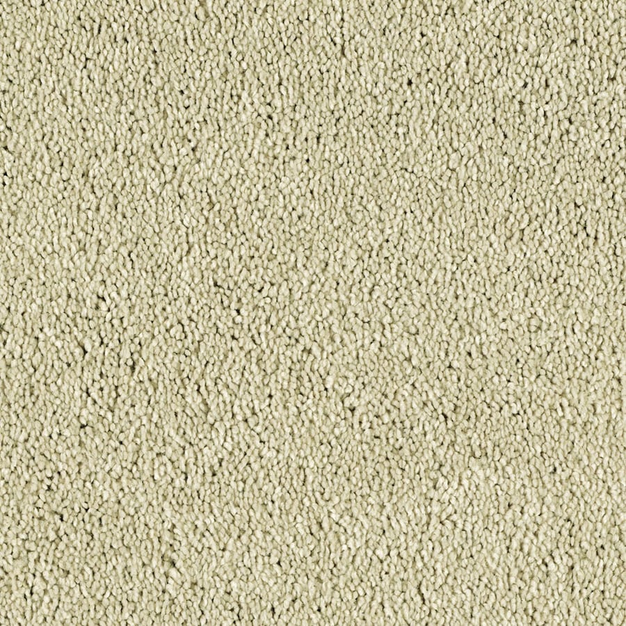 STAINMASTER Essentials Soft and Cozy III- S Linen Lux Carpet Sample