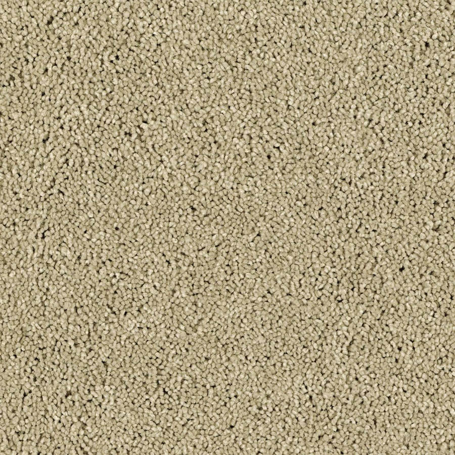 STAINMASTER Soft and Cozy III - S  Essentials Pebble Beach Plush Carpet Sample