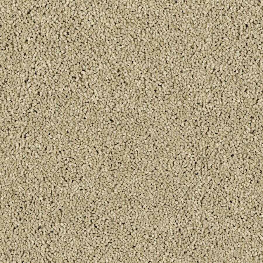 STAINMASTER Essentials Soft and Cozy III- S Pebble Beach Carpet Sample