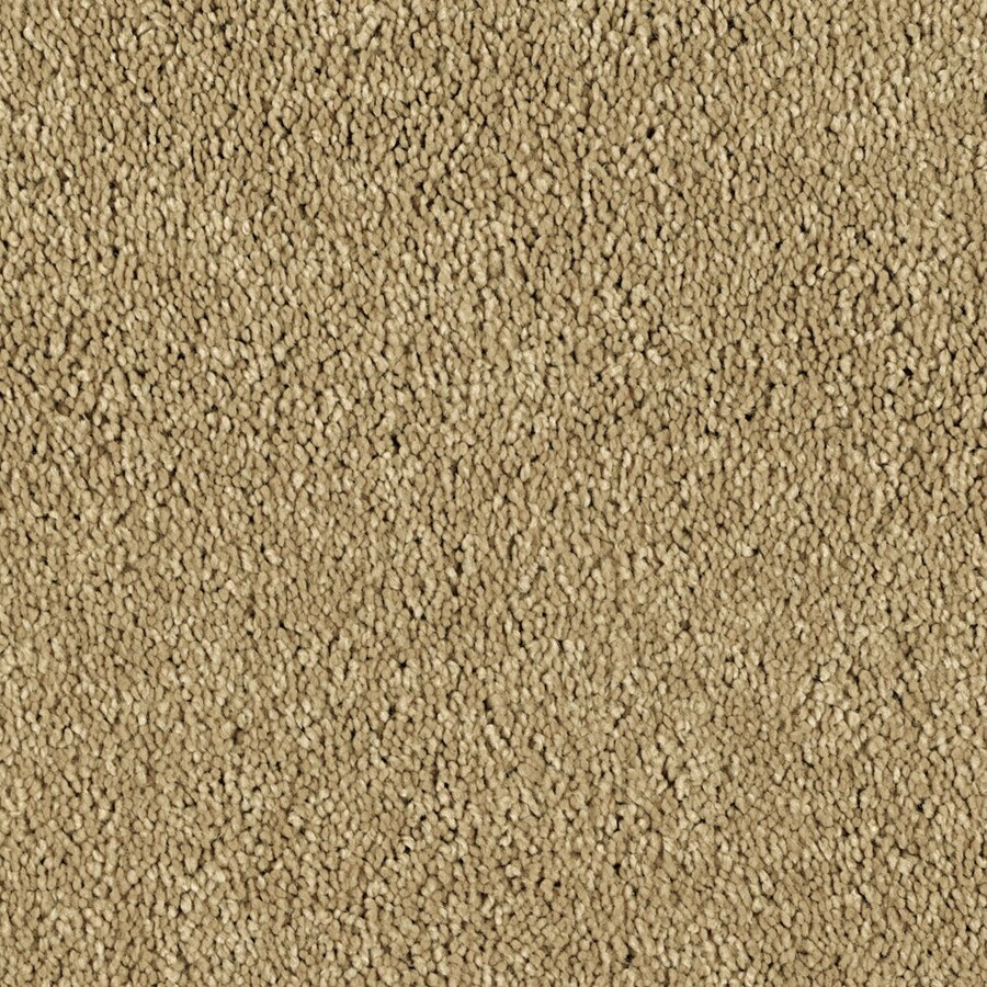 STAINMASTER Soft and Cozy III - S  Essentials Tuscan Sun Plush Carpet Sample