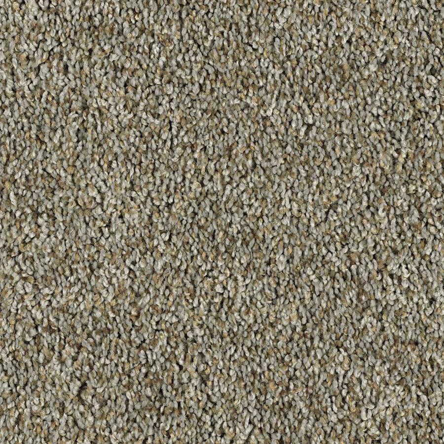 Cozy III T Essentials Brushed Nickel Plus Carpet Sample At Lowescom