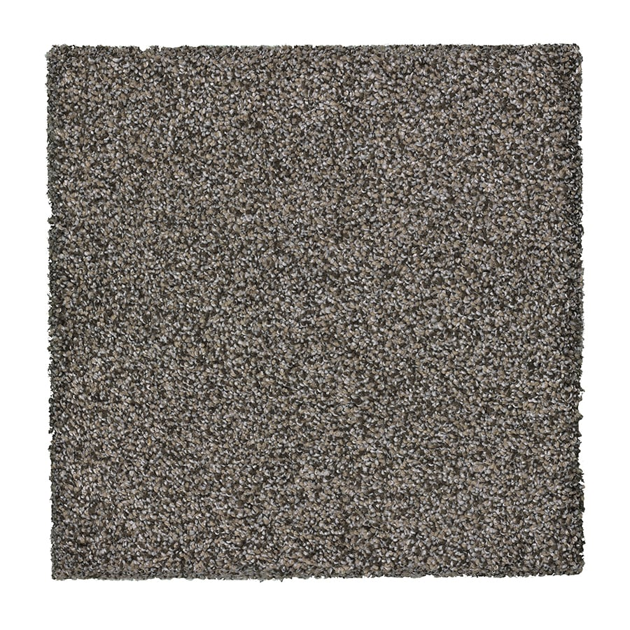 STAINMASTER Stone Peak I Essentials Concrete Plush Carpet Sample