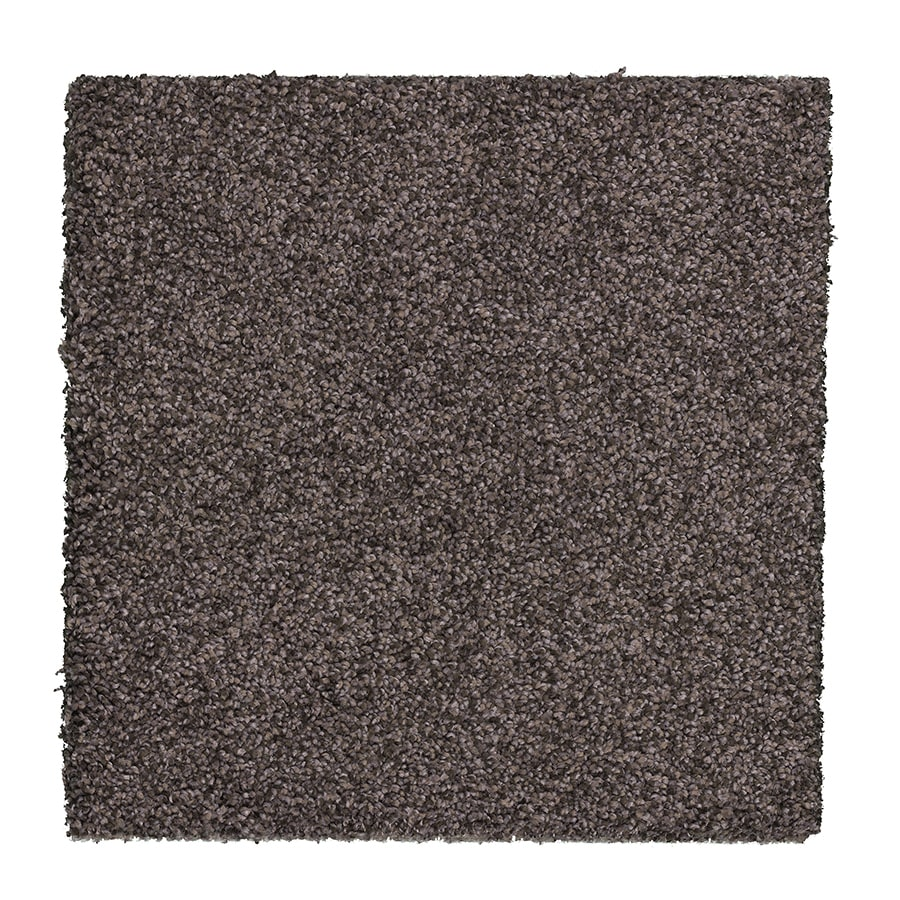 STAINMASTER Essentials Stone Peak II Raw Amethyst Carpet Sample