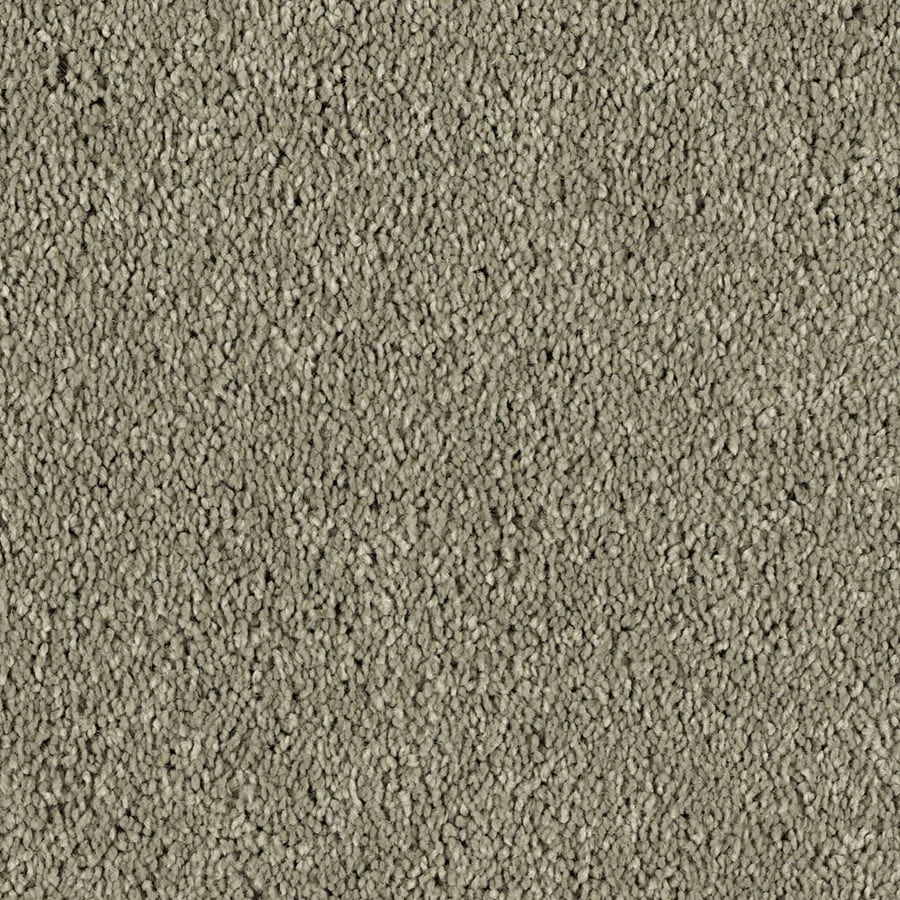 STAINMASTER Soft and Cozy 3 Essentials Taupe Stone Plush Carpet Sample