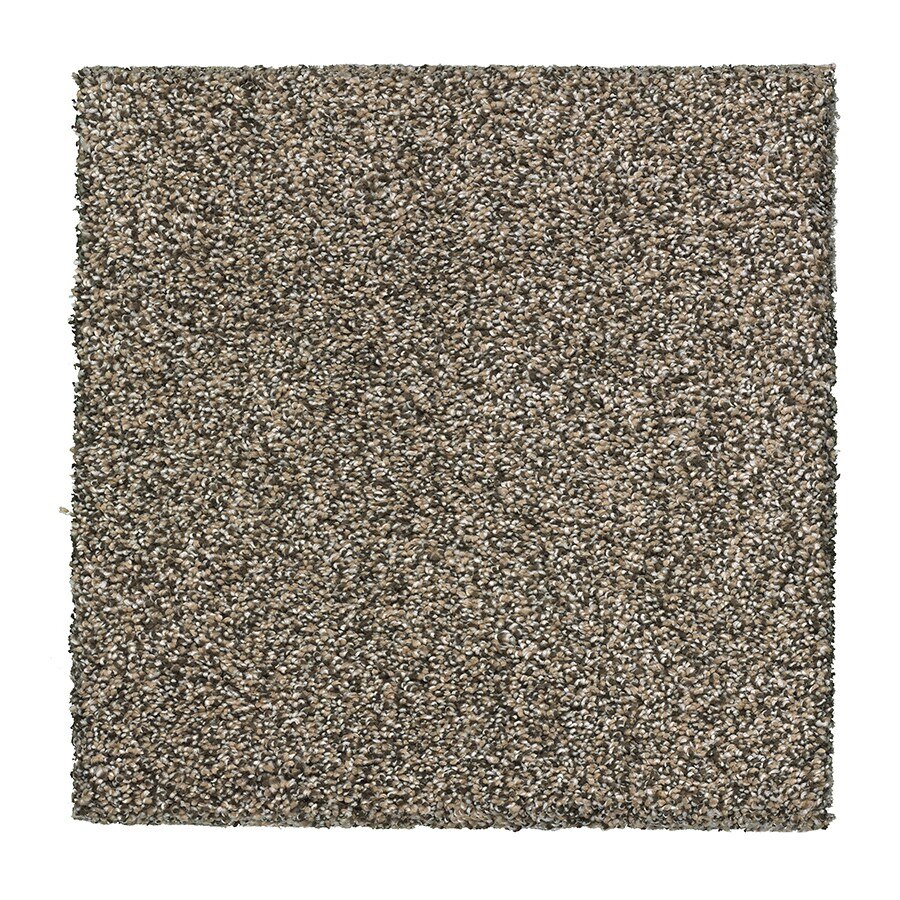 STAINMASTER Soft and Cozy 3 Essentials Quartz Plush Carpet Sample
