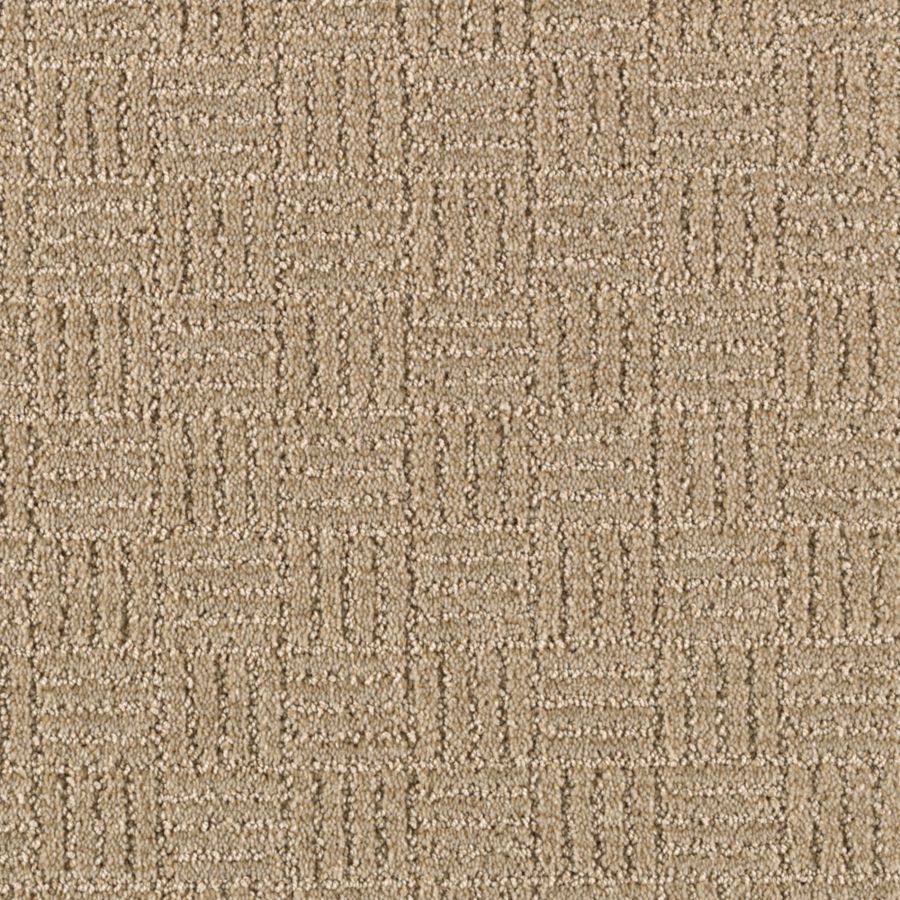 STAINMASTER Stylesboro Essentials Essence Cut and Loop Carpet Sample